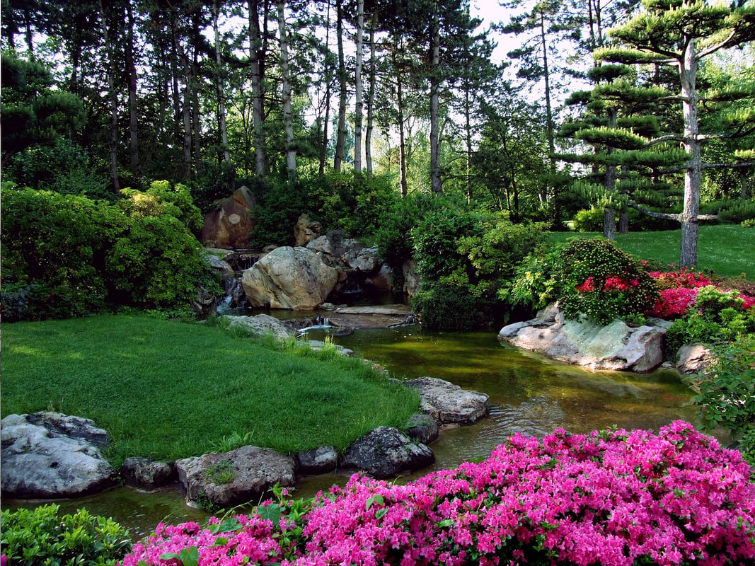 Landscaping Specialist in Richmond Hill